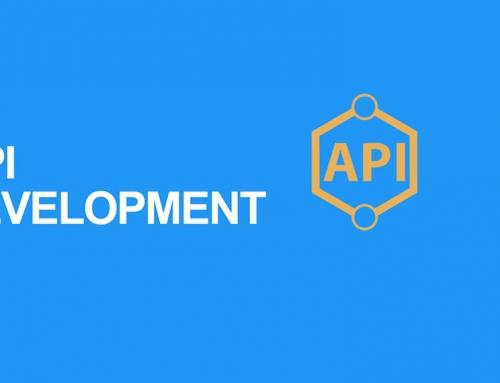 WP Plugin with custom API
