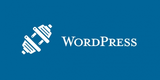 wordpress-plugin-development